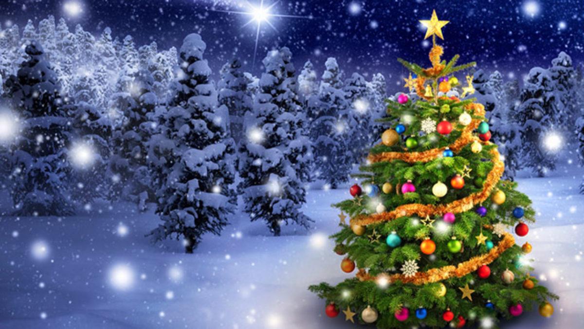 Shoppings de SP incentivam a doação e promovem Natal solidário