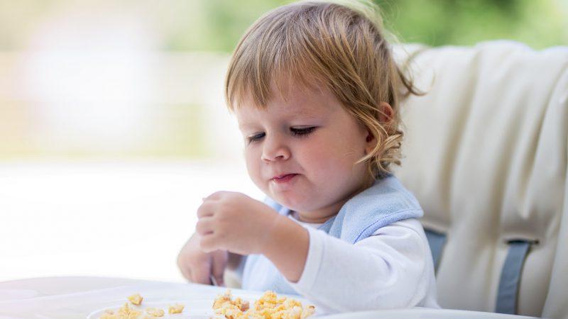 Como incluir o ovo na alimentação do bebê